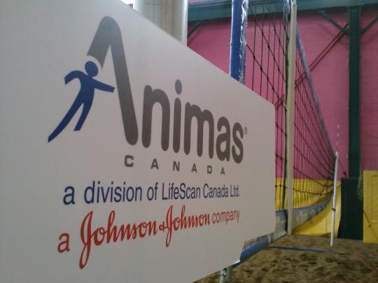 Team Animas